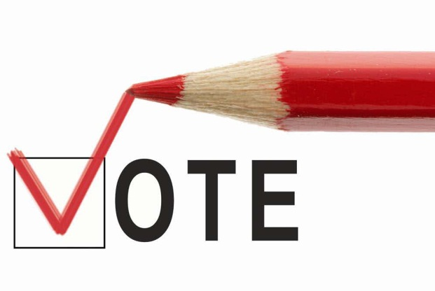 Vote Graphic