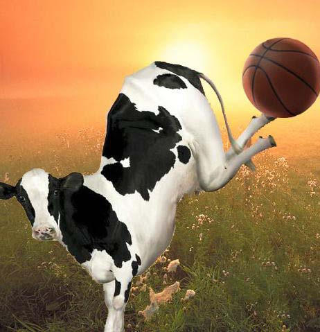 cowball sm